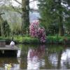 Pond-cottage-14